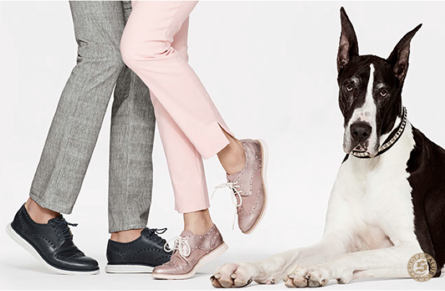 Cole Haan Must Haves
